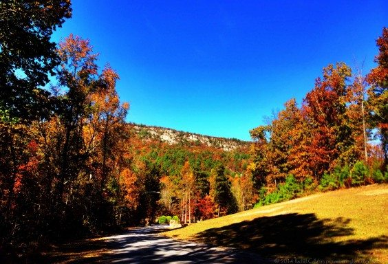 Fall Colors in St Clair County
