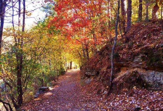 Irondale Furnace Trail