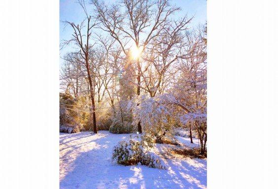 Alabama in Snow, again