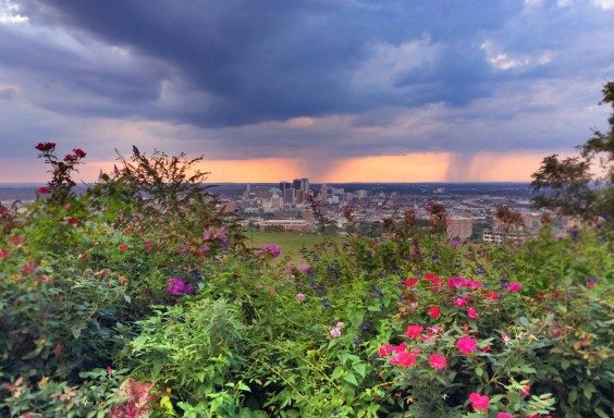 Birmingham Between The Showers and the Flowers