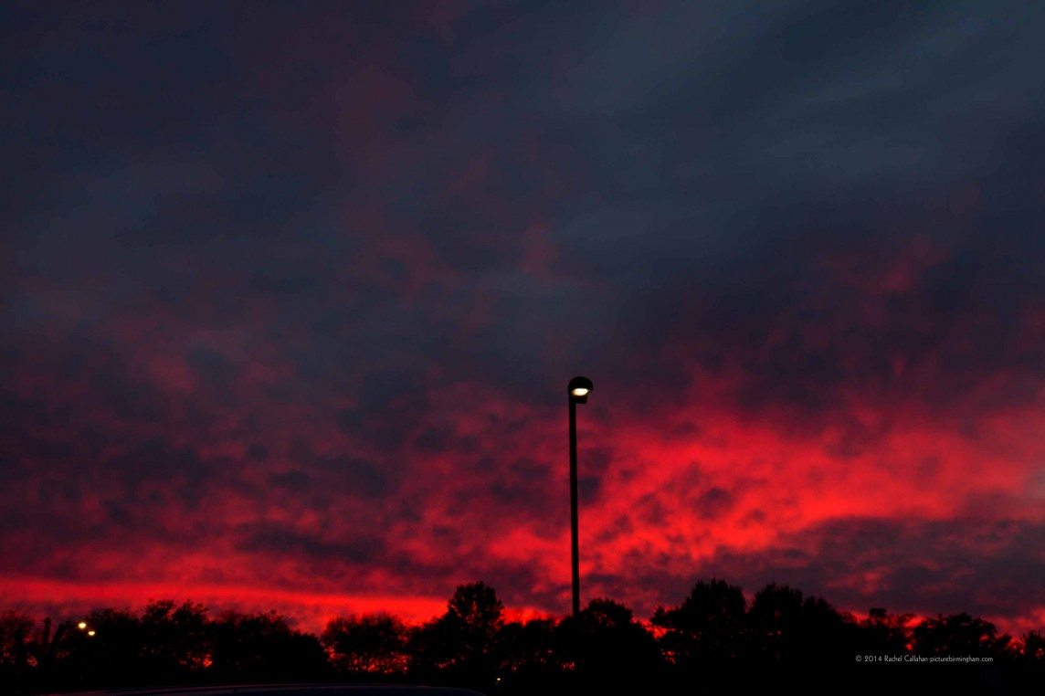 Pinks Over Huntsville