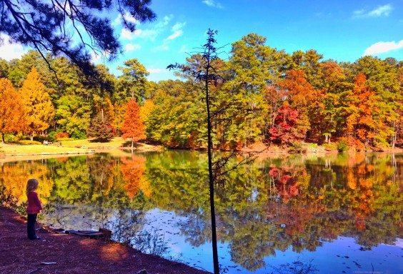 Quietly Reflecting