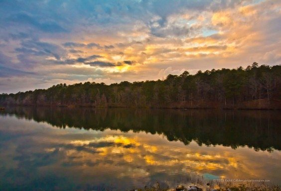 Reflections at Oak Mountain