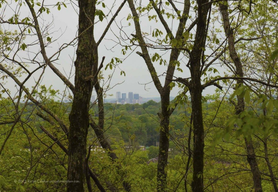 Birmingham Through the Forest