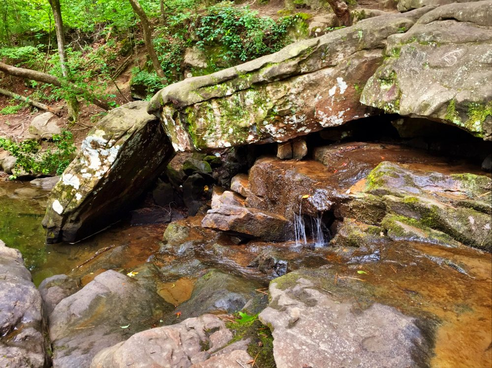 A Trickle at Moss Rock