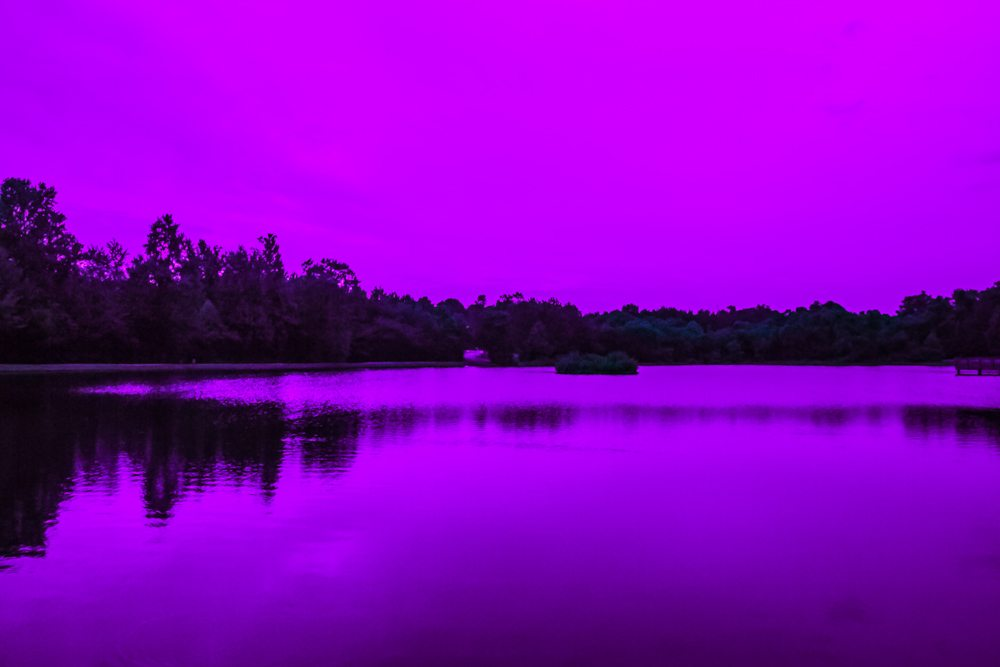 Purple Sunset (Purposefully Surreal - This didn't happen, people)