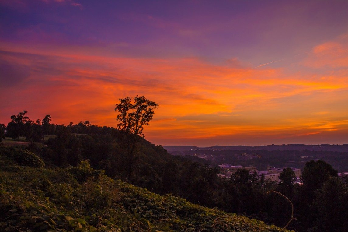 150716b-Pink-Skies-over-Kudzu