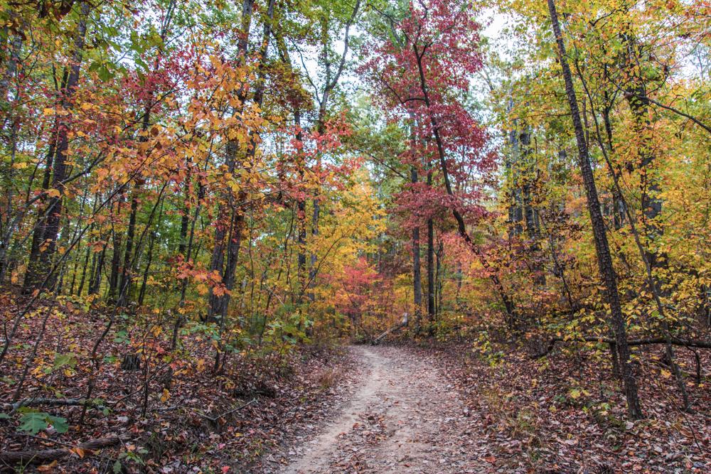 151023-Oak-Mountain-Autumn