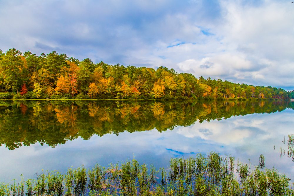 151103f-Colors-of-Fall-at-Oak-Mountain
