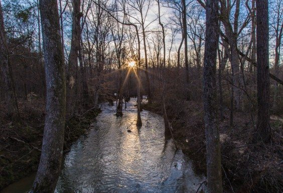 160306s-Sun-Beams-over-Kelly-Creek