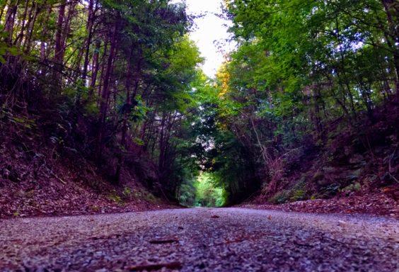 160726z-trails