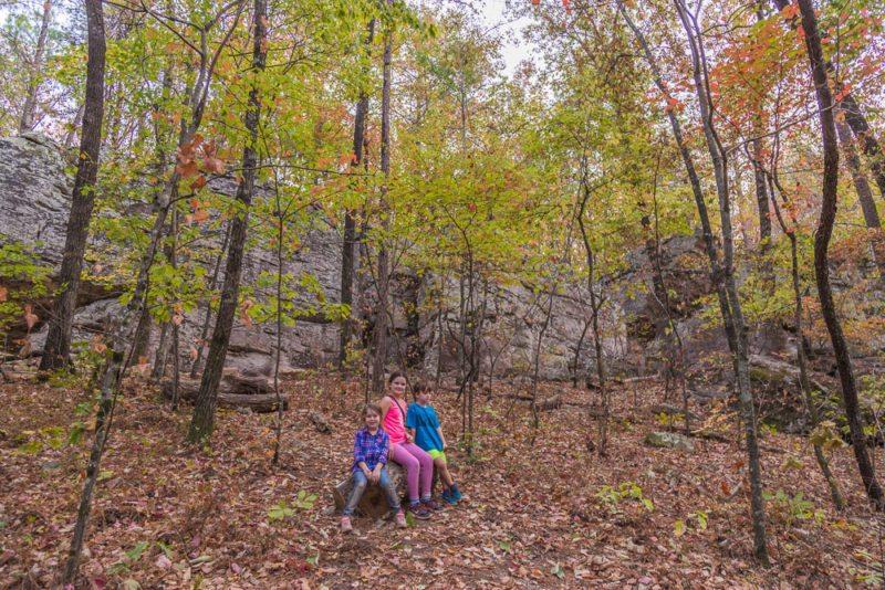 161026g-fall-in-moss-rock