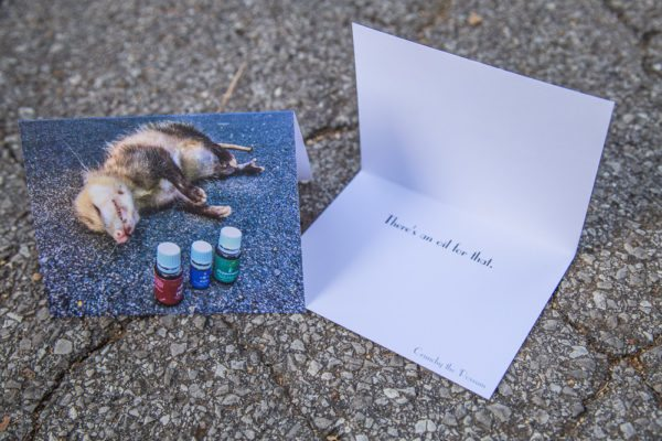 roadkill-notecards-crunchy-the-possum