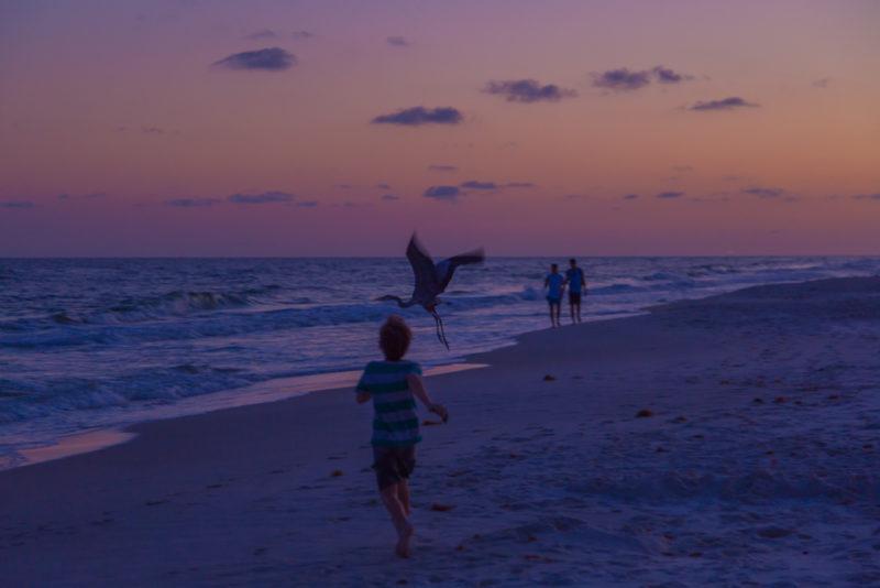 170421h-Gulf-Shores