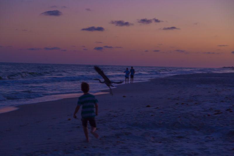 170421i-Gulf-Shores