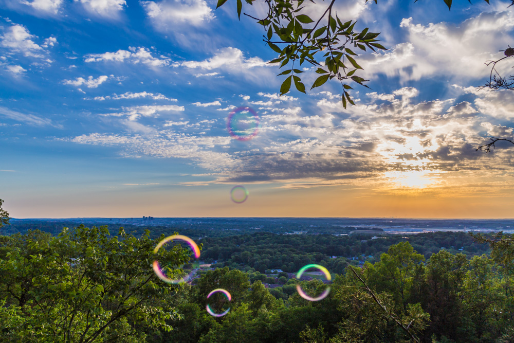 170526 Bubbles on Ruffner Mountain_MG_8577 s