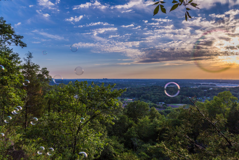 170526 Bubbles on Ruffner Mountain_MG_8582 s