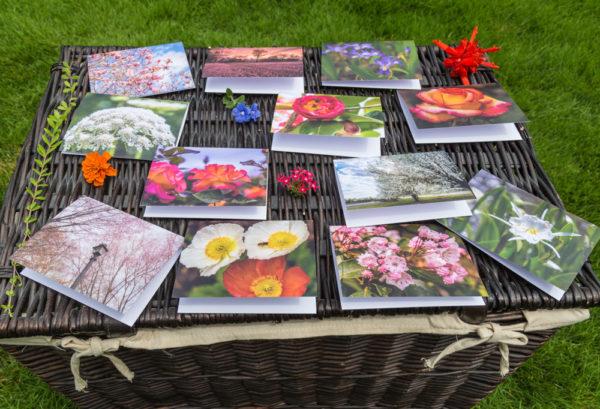 Floral-Note-Cards-Alternate-Shot s