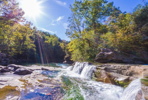 171005c Turkey Creek Nature Preserve IMG_3943