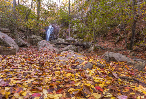 171109 Peavine Falls in the Fall IMG_9779S