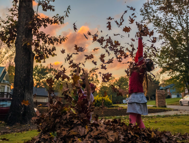 171111-Leaves-Sunset-and-Football-IMG_9849 s