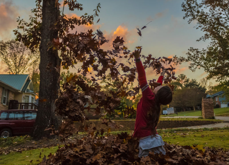 171111-Leaves-Sunset-and-Football-IMG_9853 s