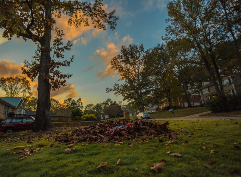 171111 Leaves and Sunset and Football IMG_9828 s