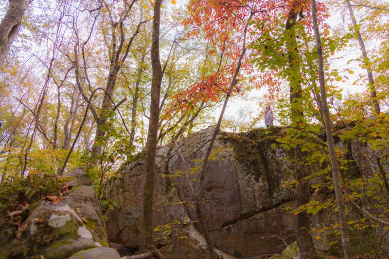 171112 Moss Rock Preserve IMG_9967 s