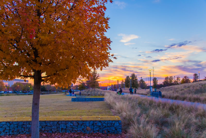 171024 Railroad Park Sunset IMG_5717 s