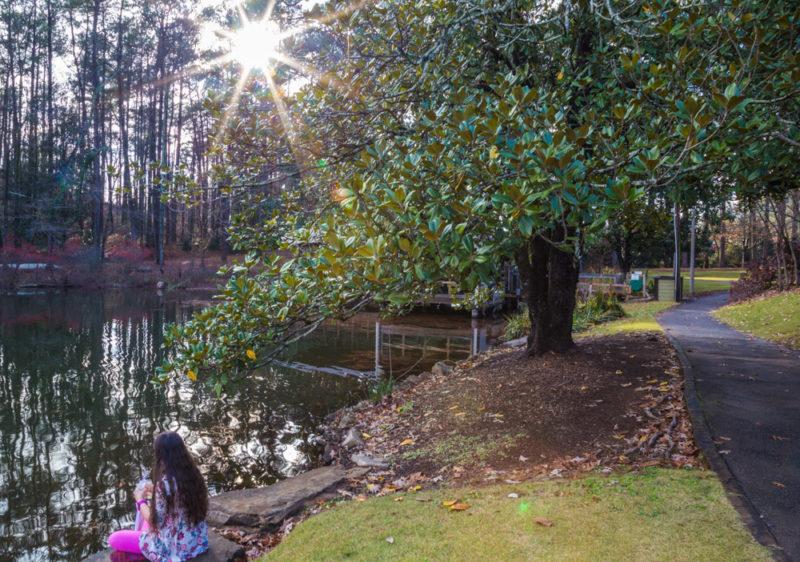 171218 Aldridge Gardens IMG_7710 s