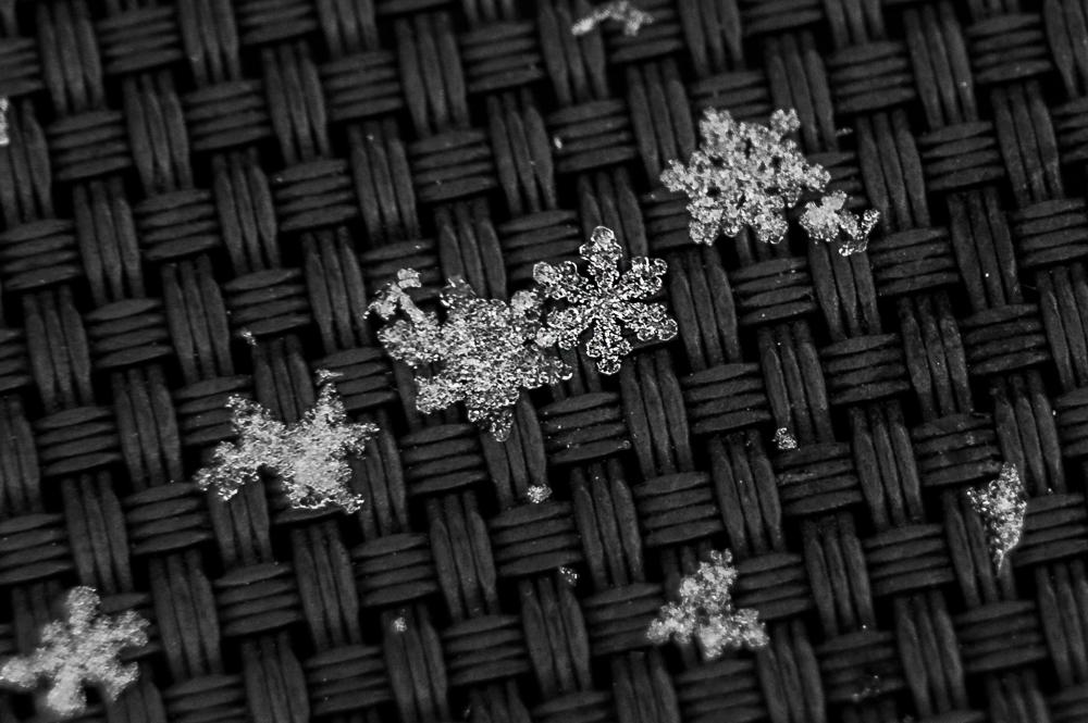 180116-Snowflake-IMG_1263 s