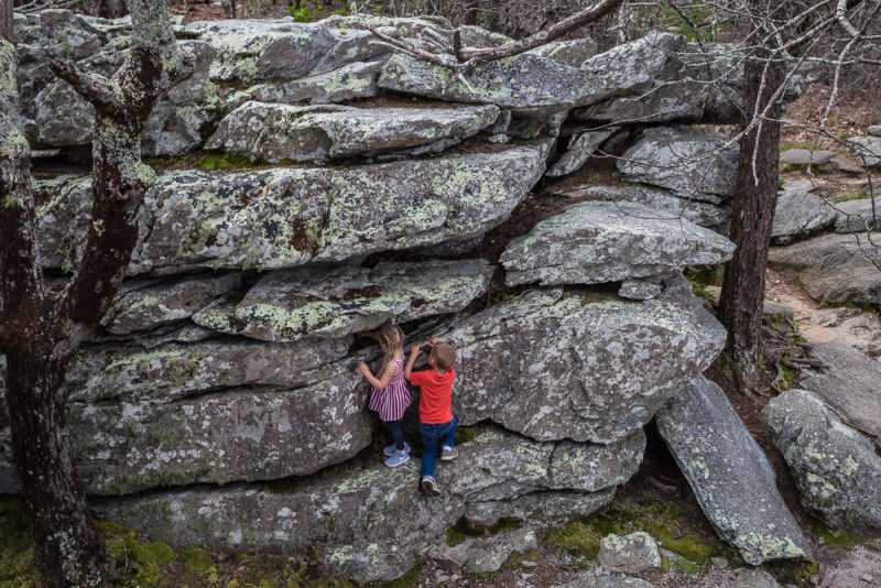180406 Cheaha State Park 6 IMG_0017 S