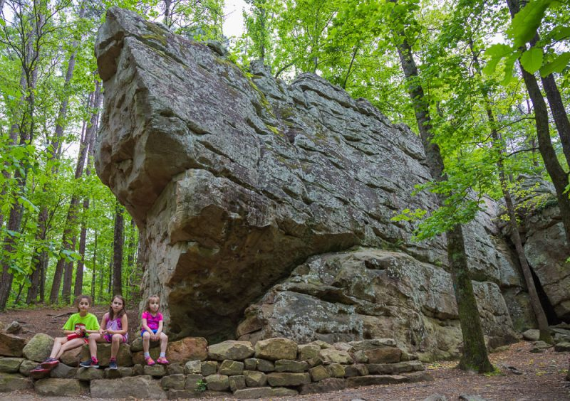180424 Hiking at Moss Rock - Waterfall Boulder Field and Mountain Laurel IMG_1858 S