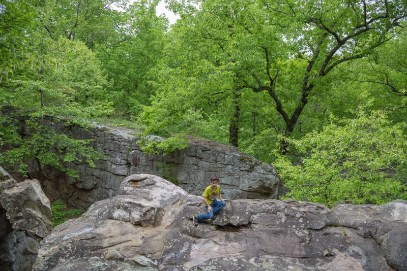 180424 Hiking at Moss Rock - Waterfall Boulder Field and Mountain Laurel IMG_1861 S
