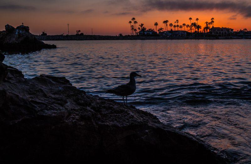 180509 Newport Beach Sunset IMG_8740