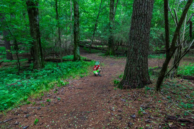 180528 Hike Finds at Joe Wheeler IMG_1541 s