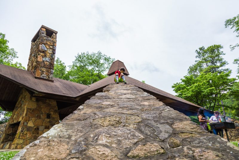180528 Hike Finds at Joe Wheeler IMG_1581 s