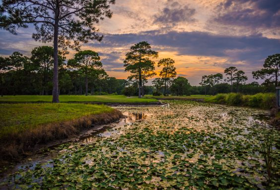 180729 Sandestin Sunset on the Golf Course IMG_1081 s