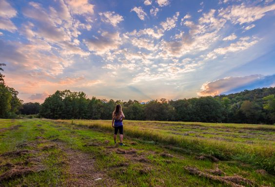 180919-Solitude-and-Sunset-at-Tannehill-IMG_5234-H s