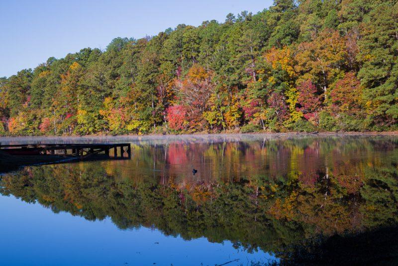181103 oak mountain in the fall IMG_9349 S