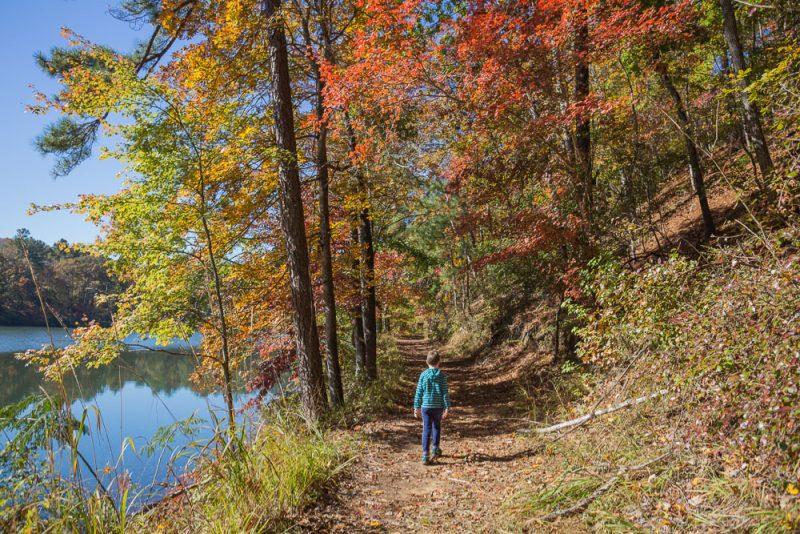 181103 oak mountain in the fall IMG_9429 S