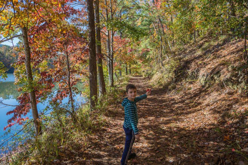 181103 oak mountain in the fall IMG_9436 S