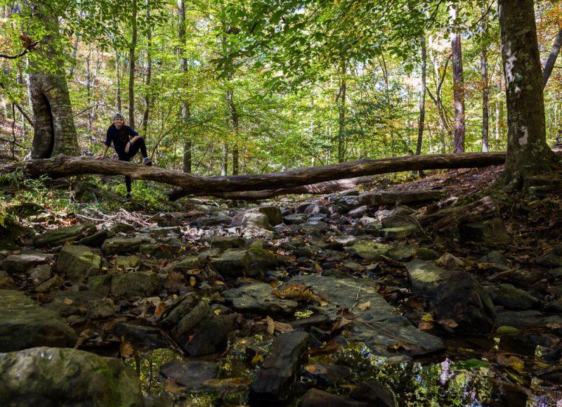 181103 oak mountain in the fall IMG_9512 S