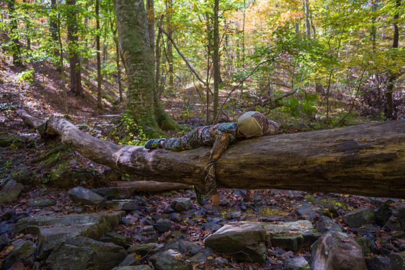181103 oak mountain in the fall IMG_9545 S