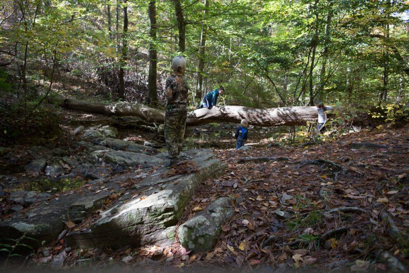 181103 oak mountain in the fall IMG_9551 S