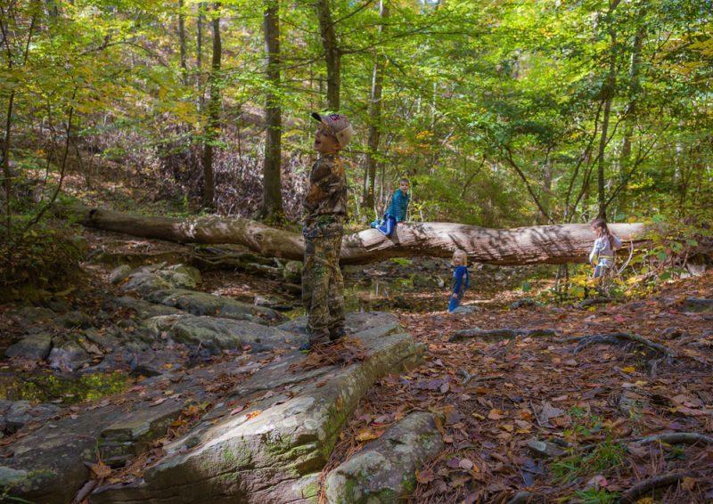 181103 oak mountain in the fall IMG_9554 S