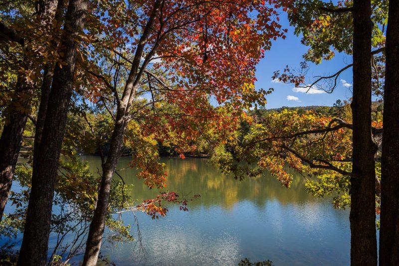 181103 oak mountain in the fall IMG_9613 S