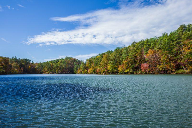 181104 oak mountain in the fall IMG_9644 S