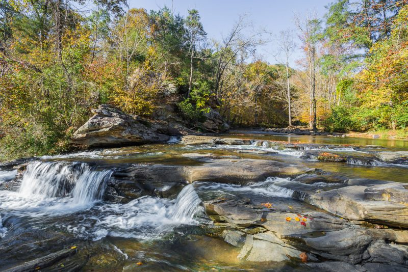 181110 Turkey Creek Nature Preserve In The Fall IMG_1144 S