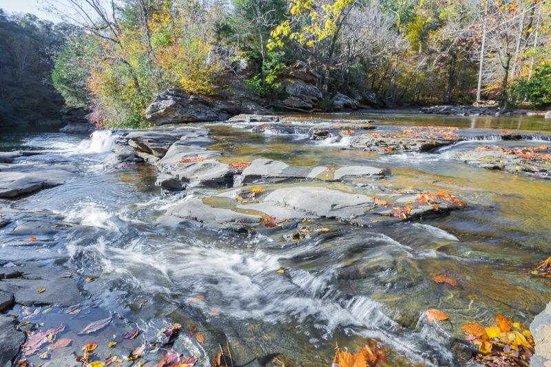 181110 Turkey Creek Nature Preserve In The Fall IMG_1211 S